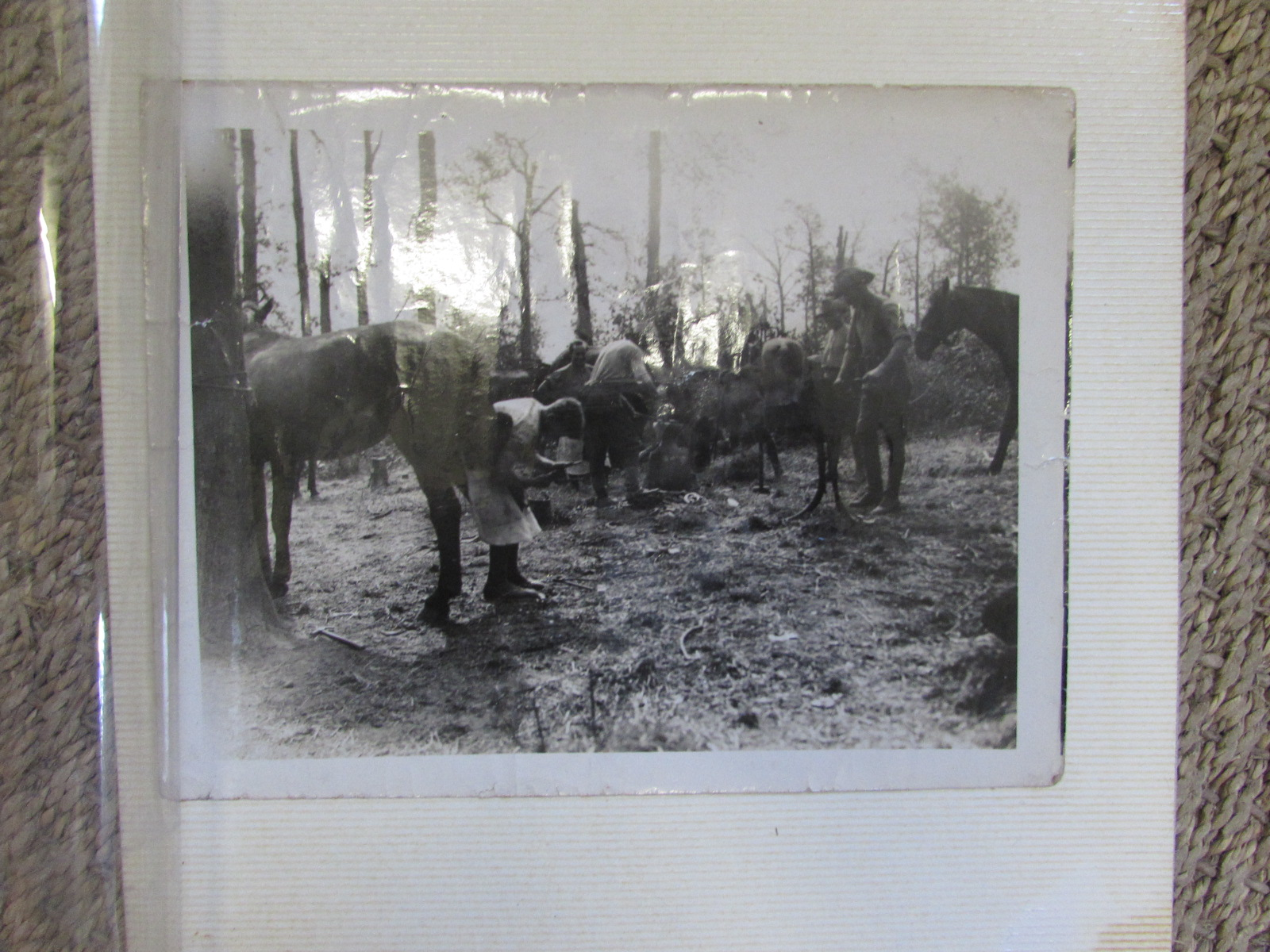 Selection of large black and white photos (original) of WW1 front line 1