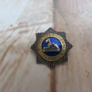 Lincolnshire reg, enamelled lapel badge